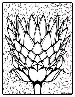 blooming03